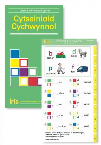 Cytseiniaid Cychwynnol