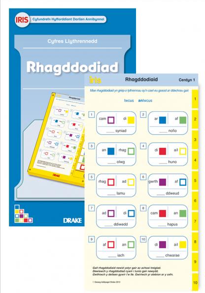 Rhagddodiaid